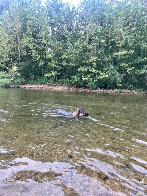 Mark Twain Camping Sept 2018 (13)